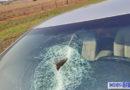 Veiculo é atingido por mola na Rodovia 141 próximo ao trevo de Novo Horizonte do Sul